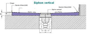 Siphon avec sorite Verticale